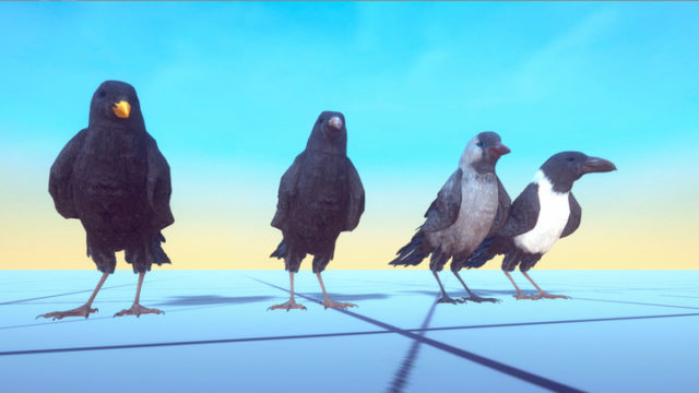 Ravens and Crow Eyecatch